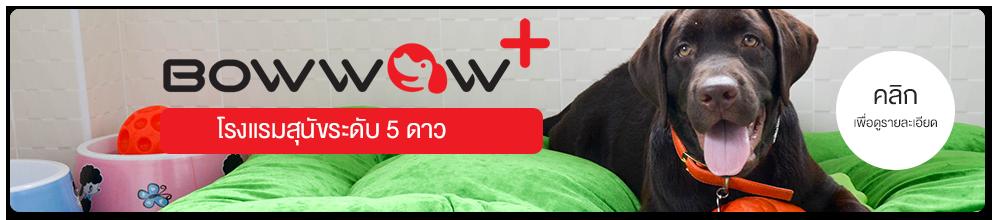 Bowwow Plus